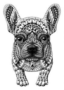 Impressive-Ultra-Detailed-Animals-by-Bioworkz-13